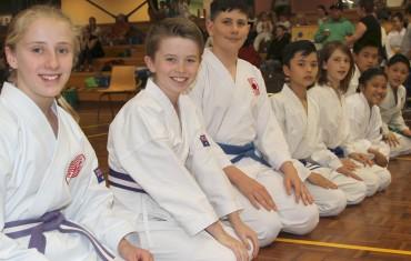 Karate for Kids (8-12 Years)
