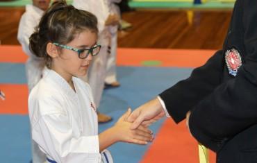 Karate for Kids (4-7 Years)