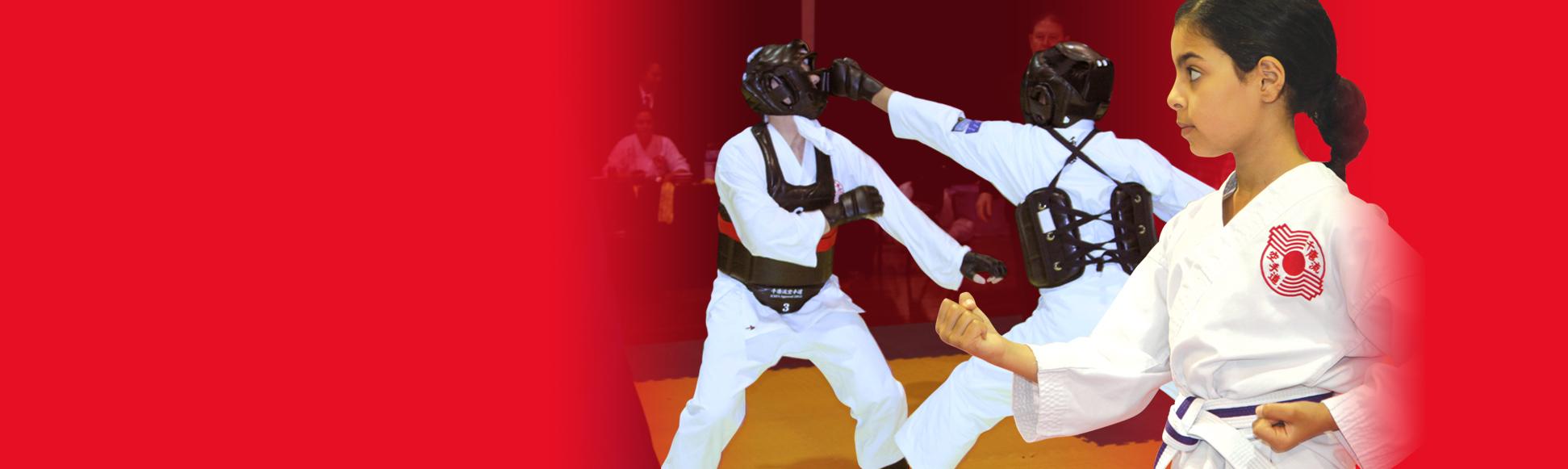 The Karate Institute