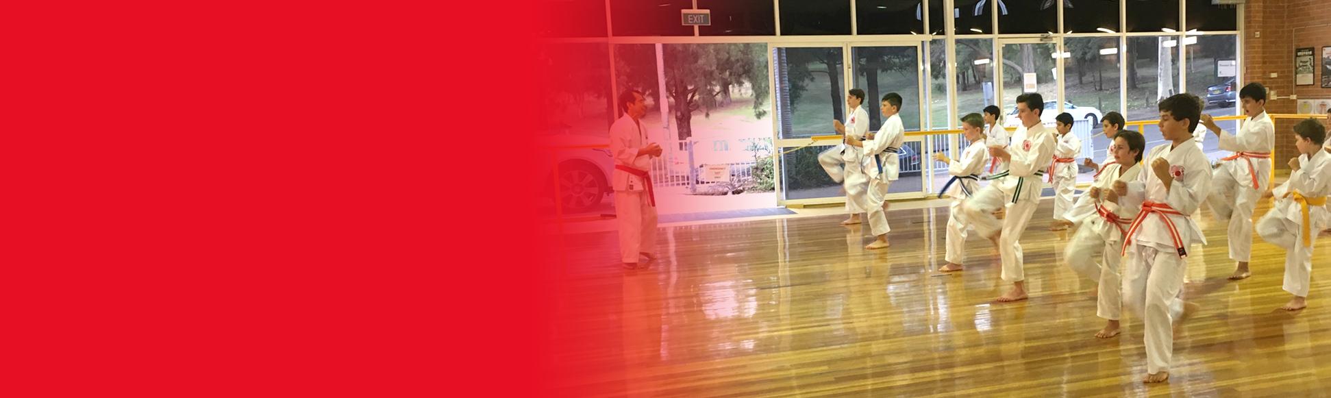The Institute of Karate