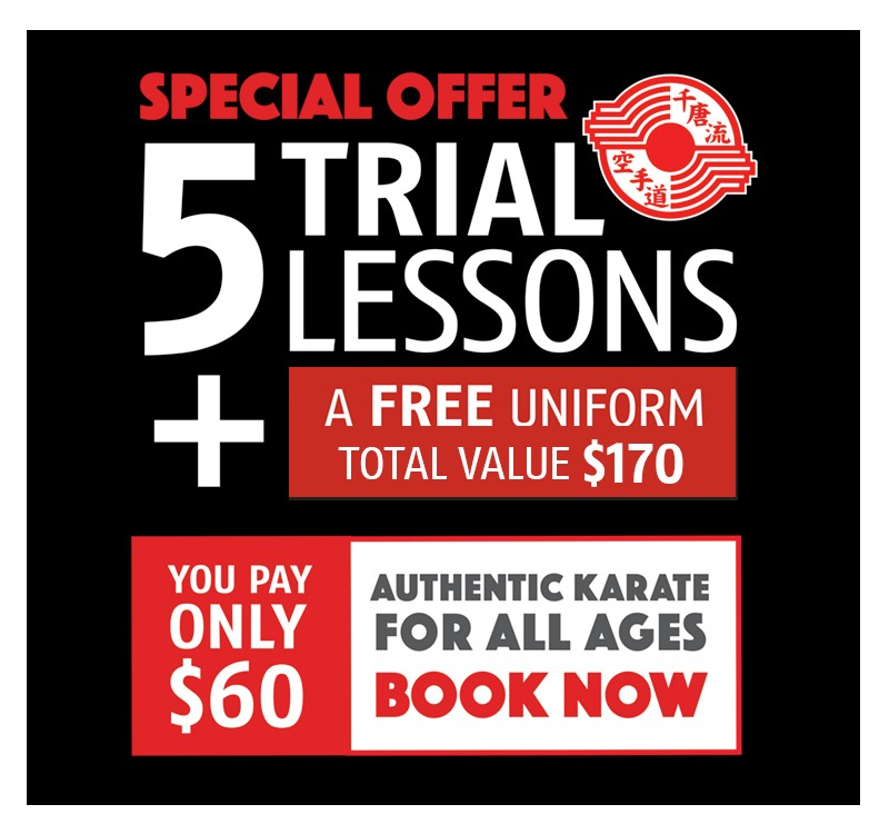 Trial offer - 5 Lessons for $60